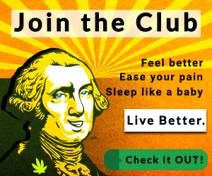 Club Hemp Oil